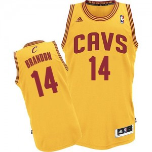 Maillot NBA Authentic Terrell Brandon #14 Cleveland Cavaliers Alternate Or - Homme